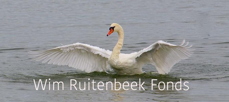Wim Ruitenbeek Fonds logo